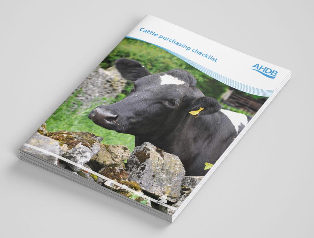 AHDB Cattle Purchasing Checklist document