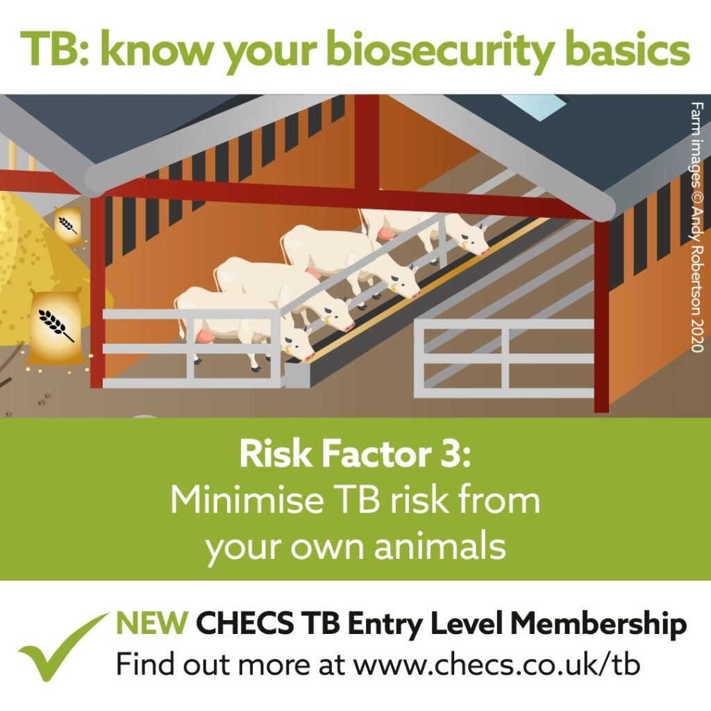 Minimise TB risk from your own animals
