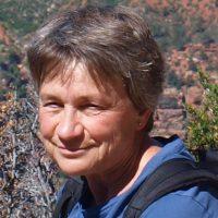 Bridget Taylor - Director from British Cattle Veterinary Association Director